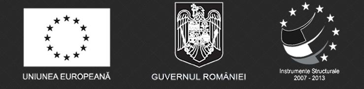 Uniunea Europeana, Guvernul Romaniei